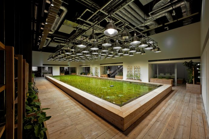 Pasona HQ's main entrance lobby plays host to a rice paddy. Photo by Luca Vignelli.