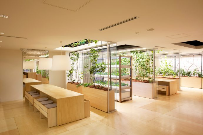 Casual open spaces overflowing with plant life create a dynamic environment for Pasona workers. Photo by Luca Vignelli.