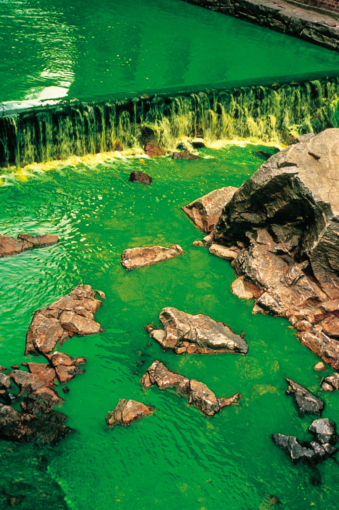 Green_river_100062